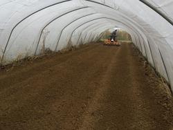 fresa interrasassi con rullo 155cm di lavoro per la preparazione del terreno mod dfu 160